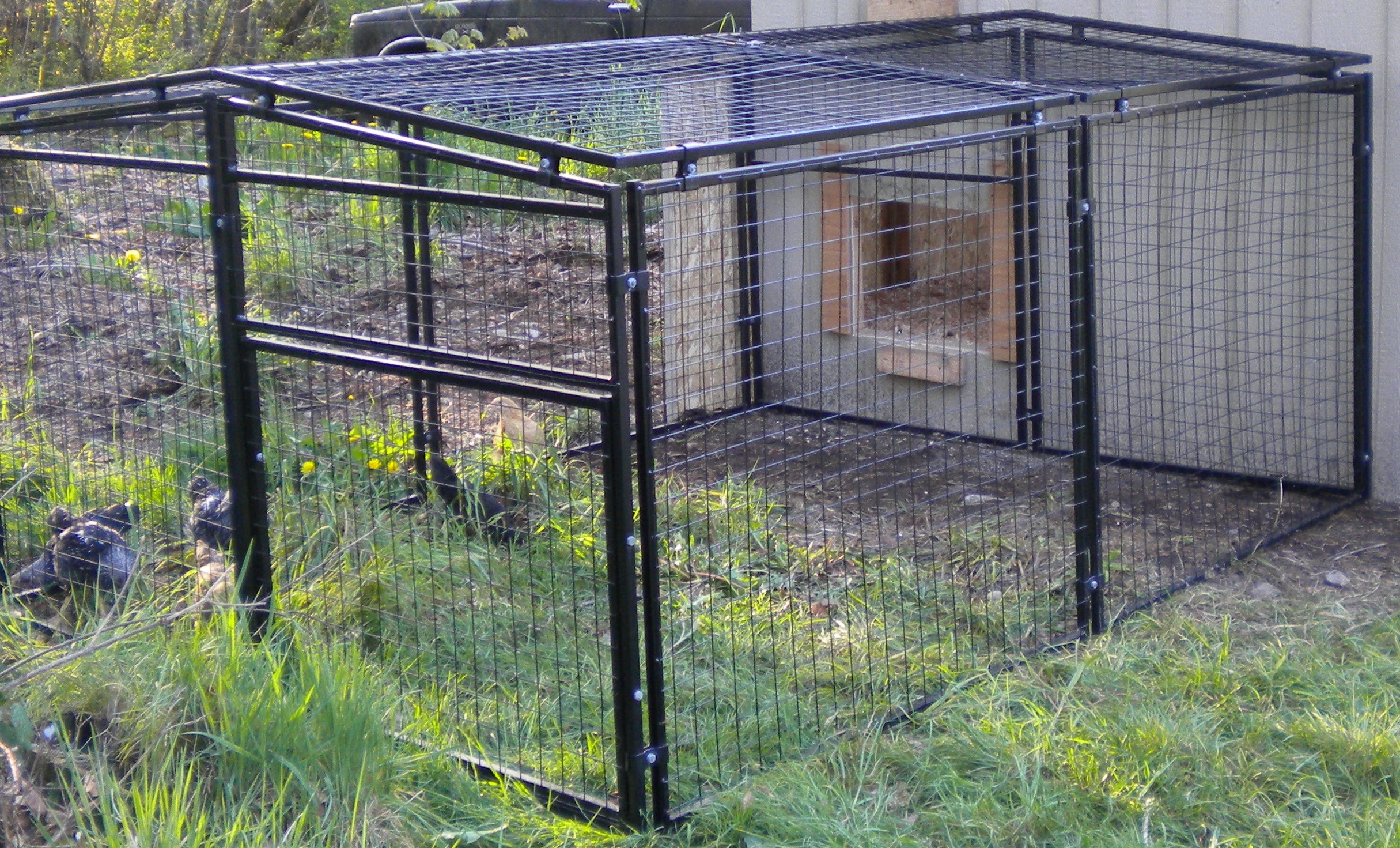 Chickens Rugged Ranch Pen